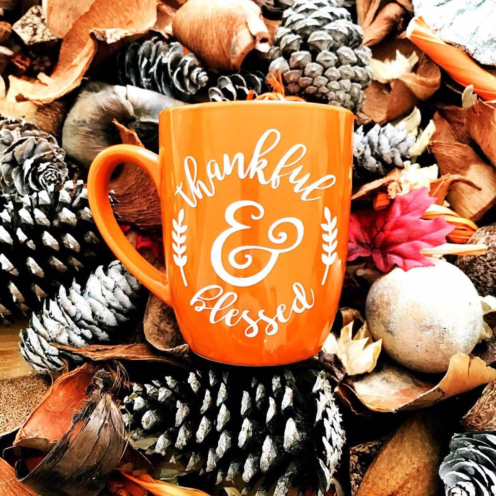 Orange Thankful & Blessed Mug